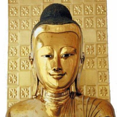 Buda-380-600-400-80